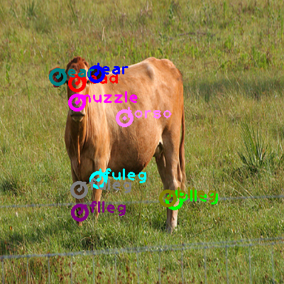 2009_001145-cow_0.png