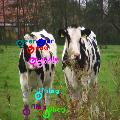 2009_001163-cow_0.png