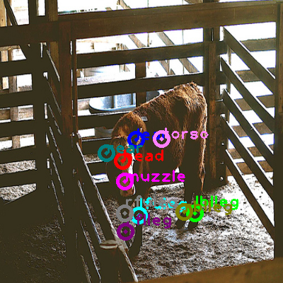 2009_002901-cow_0.png