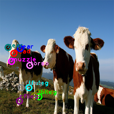 2009_003825-cow_0.png