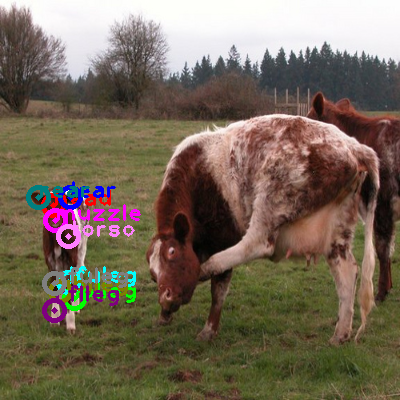 2009_004169-cow_0.png