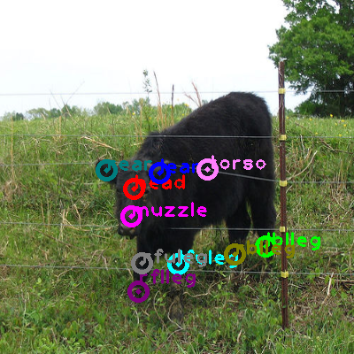 2010_000498-cow_0.png