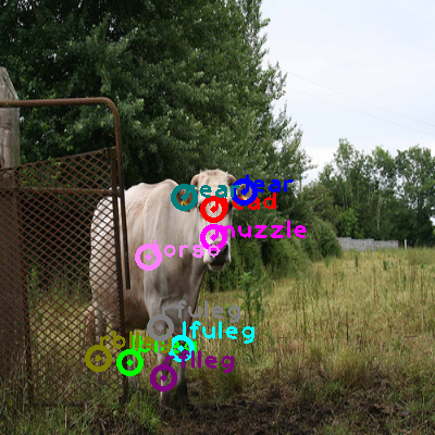 2010_001548-cow_0.png