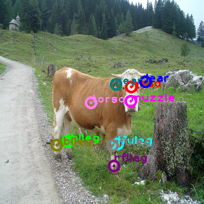 2010_004635-cow_0.png