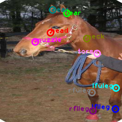 2008_000119-horse_0.png