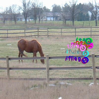 2008_000219-horse_0.png