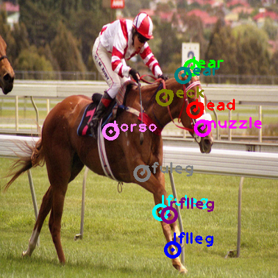 2008_000552-horse_0.png