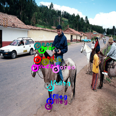 2008_000880-horse_0.png