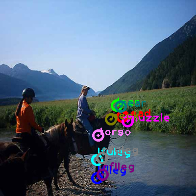 2008_002411-horse_0.png