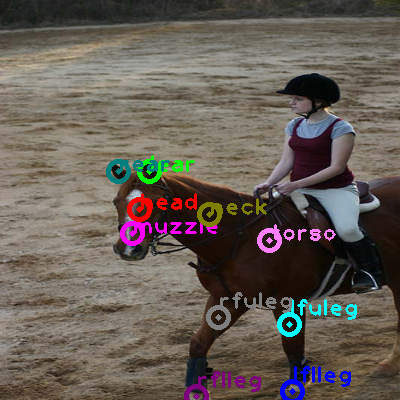 2008_002666-horse_0.png