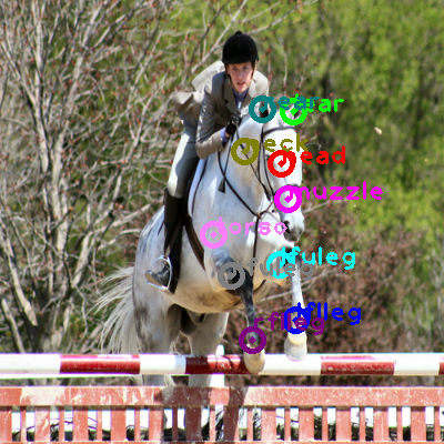2008_002835-horse_0.png