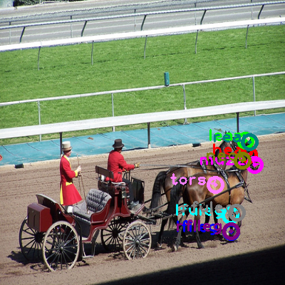 2008_003043-horse_0.png