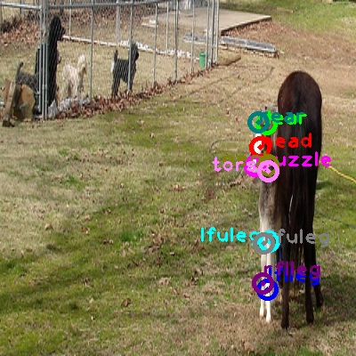 2008_003272-horse_0.png
