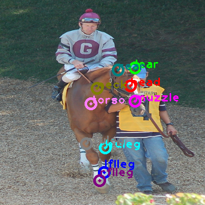 2008_003596-horse_0.png