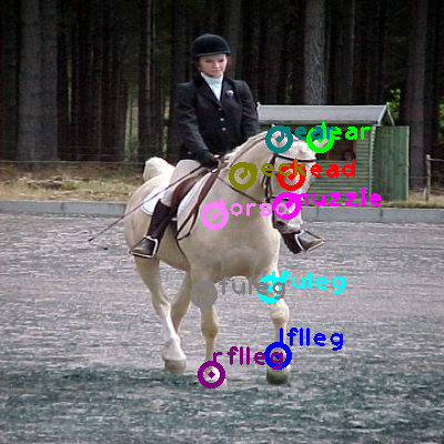 2008_004476-horse_0.png