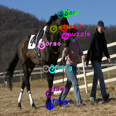 2008_005215-horse_0.png