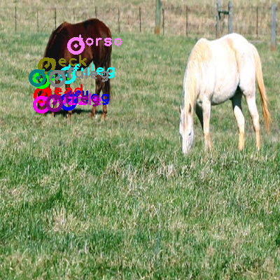 2008_005313-horse_0.png