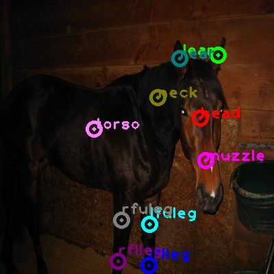 2008_005327-horse_0.png