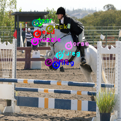 2008_005501-horse_0.png