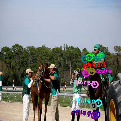 2008_005582-horse_0.png