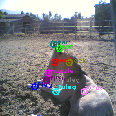 2008_005668-horse_0.png