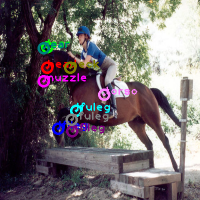 2008_005726-horse_0.png