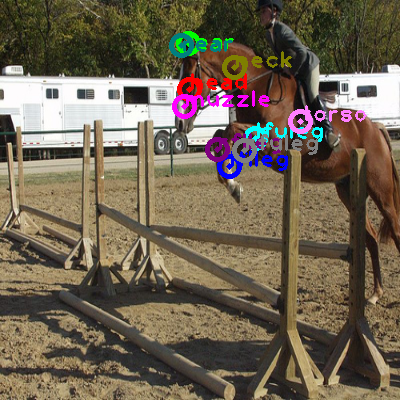 2008_005934-horse_0.png