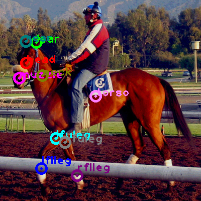 2008_006646-horse_0.png