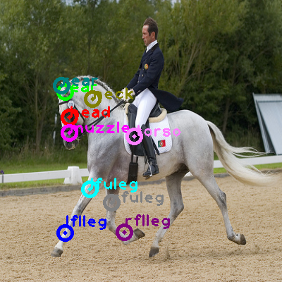 2008_006912-horse_0.png