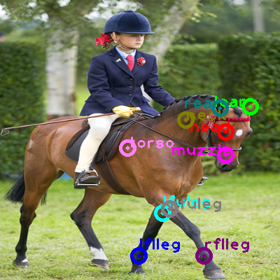 2008_006953-horse_0.png
