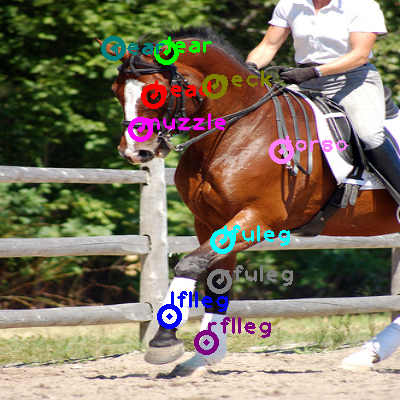 2008_006991-horse_0.png
