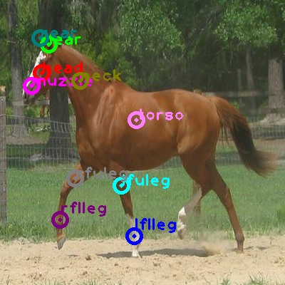 2008_007004-horse_0.png