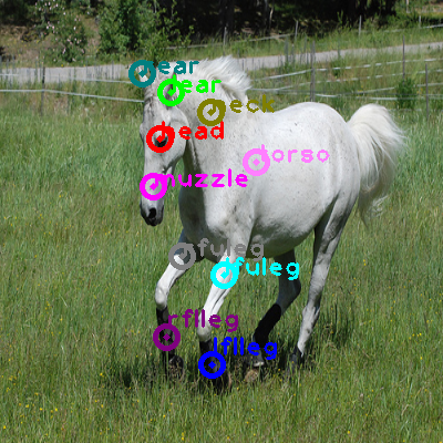 2008_008193-horse_0.png