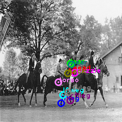 2009_000934-horse_1.png
