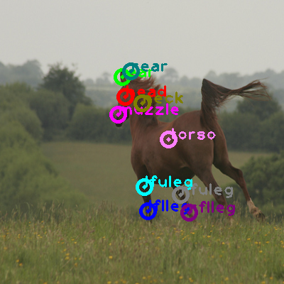 2009_001055-horse_0.png