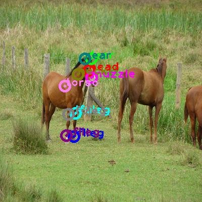 2009_001147-horse_0.png