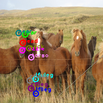 2009_001749-horse_0.png