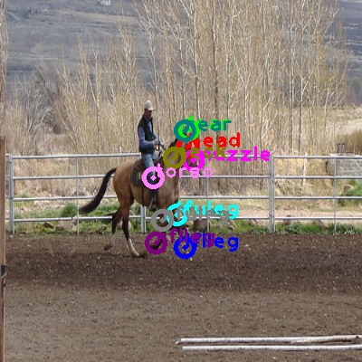 2009_001890-horse_0.png