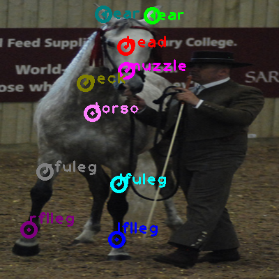 2009_002046-horse_0.png