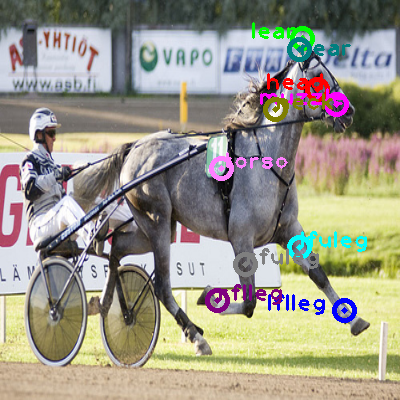 2009_002182-horse_0.png
