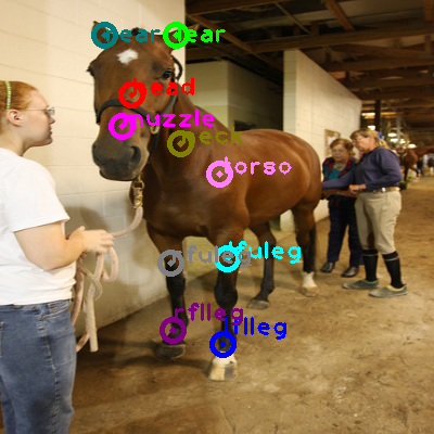 2009_002477-horse_0.png
