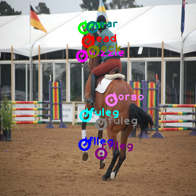 2009_003294-horse_0.png