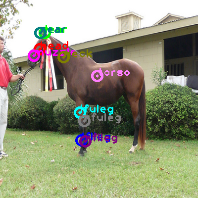 2009_003530-horse_0.png