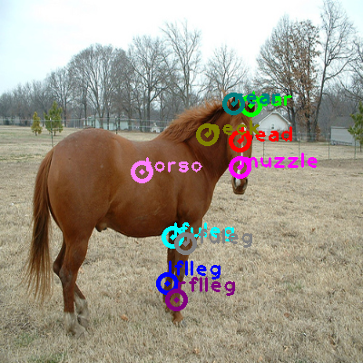 2009_003565-horse_0.png