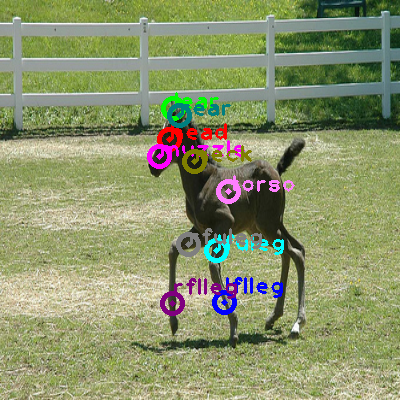 2009_003572-horse_0.png