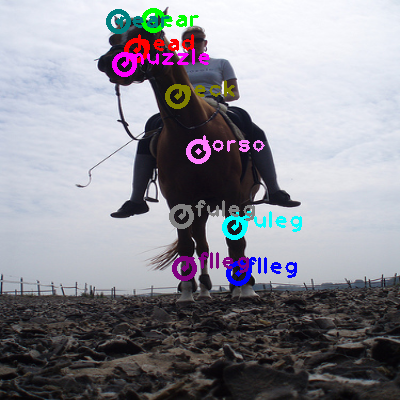 2009_003637-horse_0.png