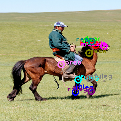 2009_003768-horse_0.png