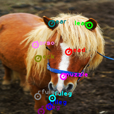 2009_004606-horse_0.png
