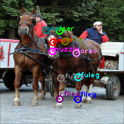 2009_005269-horse_0.png