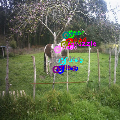 2010_000273-horse_0.png